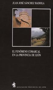 El fenómeno comarcal en la provincia de León