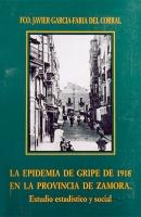La epidemia de gripe en 1918 en la provincia de Zamora: estudio estadístico y social